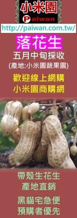 排灣族小米園電子報-落花生