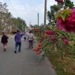 10-4佳崇教會社區環保