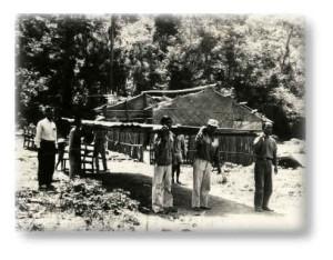 這是民國57年本部落遷移時的所在地─即現在的平和分校。族人長輩們抬著從舊平和教會的木樑準備搭概本長老教會的臨時聚會建物。賴約翰(滋膏)記於比悠瑪部落網站 2000.08.21 《照片─比悠瑪(舊名:平和)長老教會提供》