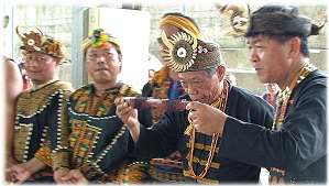 Paiwan Tribe has good traditional wine drinking culture.