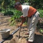5-1.2018.6.25農糧署親來小米園蔬果園採土樣賴約翰挖五處土樣檢驗