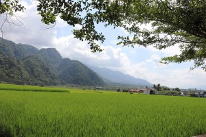 ◆攝影:蔡愛香/玉山神學院道碩生