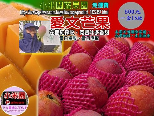 ◆點圖愛文芒果線上網購