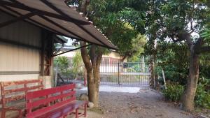 ◆工寮旁遮頂樹蔭下是-風的路